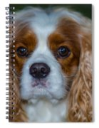 King Charles Spiral Notebook
