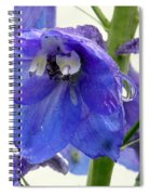 King Delphinum  Spiral Notebook