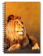 King Leo Spiral Notebook