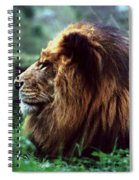 King Of Beasts Spiral Notebook
