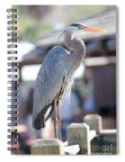 King Of The Boardwalk Spiral Notebook