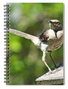 King Of The Feeder Spiral Notebook