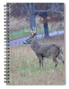 King Of The Hill Spiral Notebook