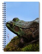 King Of The Rock Spiral Notebook
