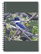 King Of The Tree Spiral Notebook