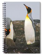 King Penguins With Chick And Egg Spiral Notebook