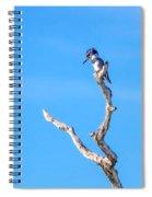 Kingfisher Perch Spiral Notebook