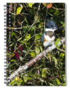 Kingfisher  Spiral Notebook