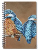 Kingfishers Spiral Notebook