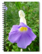 King's Mantle Flower  6 Spiral Notebook