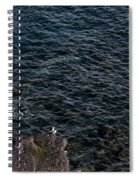 Seagulls At Cliffs Ready To Fish In Mediterranean Sea - Kings Of The World Spiral Notebook