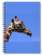 Kiss Me Baby Spiral Notebook