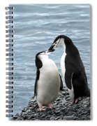 Kiss Me You Fool Spiral Notebook