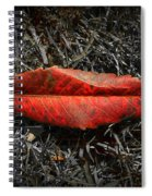 Kiss Of Leaf Spiral Notebook