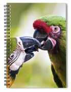 Kissing Macaws Spiral Notebook
