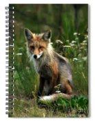 Kit Red Fox Spiral Notebook