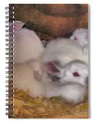 Kits In A Box Spiral Notebook