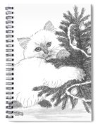 Kitten And Christmas Tree Spiral Notebook