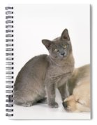 Kitten And Puppy Lying Together Spiral Notebook