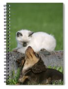 Kitten And Puppy Playing Spiral Notebook