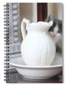 Kitten And The Picther Spiral Notebook