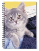 Kitten In Laundry Spiral Notebook