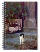 Kitten Italiano Spiral Notebook