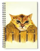 Kitten On Fence Spiral Notebook
