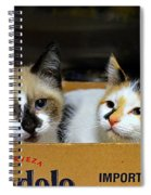 Kittens In A Box Spiral Notebook