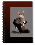 Kittens In Designer Ladies Shoes Spiral Notebook