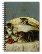Kittens Up To Mischief Spiral Notebook
