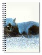 Kitty Blue IIII Spiral Notebook
