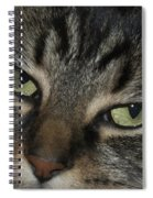 Kitty Cat Eyes Spiral Notebook