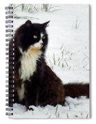 Kitty Cat In The Snow Spiral Notebook