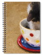 Kitty Cat Time Out Spiral Notebook