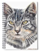 Kitty Kat Iphone Cases Smart Phones Cells And Mobile Cases Carole Spandau Cbs Art 337 Spiral Notebook