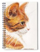 Kitty Kat Iphone Cases Smart Phones Cells And Mobile Cases Carole Spandau Cbs Art 338 Spiral Notebook