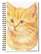 Kitty Kat Iphone Cases Smart Phones Cells And Mobile Cases Carole Spandau Cbs Art 339 Spiral Notebook