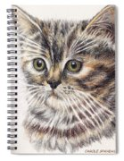 Kitty Kat Iphone Cases Smart Phones Cells And Mobile Cases Carole Spandau Cbs Art 343 Spiral Notebook