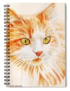 Kitty Kat Iphone Cases Smart Phones Cells And Mobile Cases Carole Spandau Cbs Art 344 Spiral Notebook