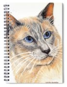 Kitty Kat Iphone Cases Smart Phones Cells And Mobile Cases Carole Spandau Cbs Art 346 Spiral Notebook