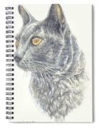 Kitty Kat Iphone Cases Smart Phones Cells And Mobile Cases Carole Spandau Cbs Art 347 Spiral Notebook