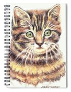 Kitty Kat Iphone Cases Smart Phones Cells And Mobile Cases Carole Spandau Cbs Art 350 Spiral Notebook