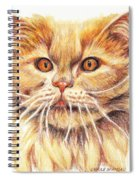 Kitty Kat Iphone Cases Smart Phones Cells And Mobile Cases Carole Spandau Cbs Art 351 Spiral Notebook
