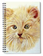 Kitty Kat Iphone Cases Smart Phones Cells And Mobile Phone Cases Carole Spandau 301 Spiral Notebook