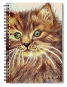 Kitty Kat Iphone Cases Smart Phones Cells And Mobile Phone Cases Carole Spandau 317 Spiral Notebook