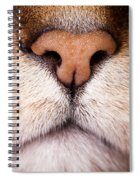 Kitty Nose  Spiral Notebook