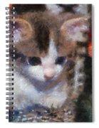 Kitty Photo Art 02 Spiral Notebook
