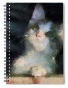 Kitty Photo Art 05 Spiral Notebook