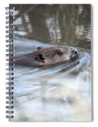 Knife In Water Spiral Notebook